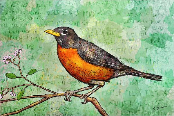 watercolor bird sketch