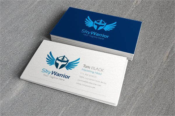sky-warrior-logo