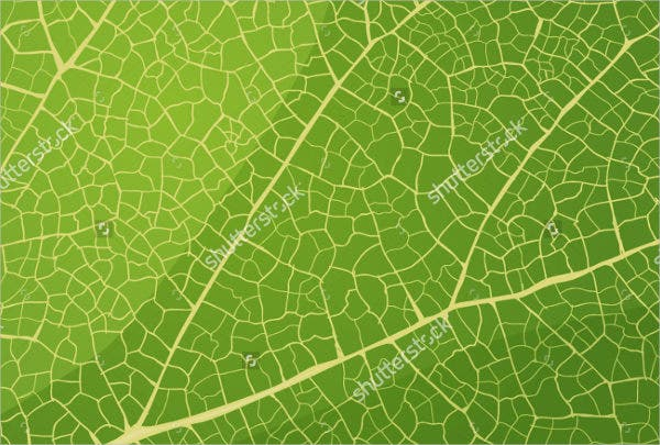 vector-leaf-texture