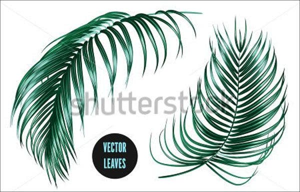 tropical-leaf-vector