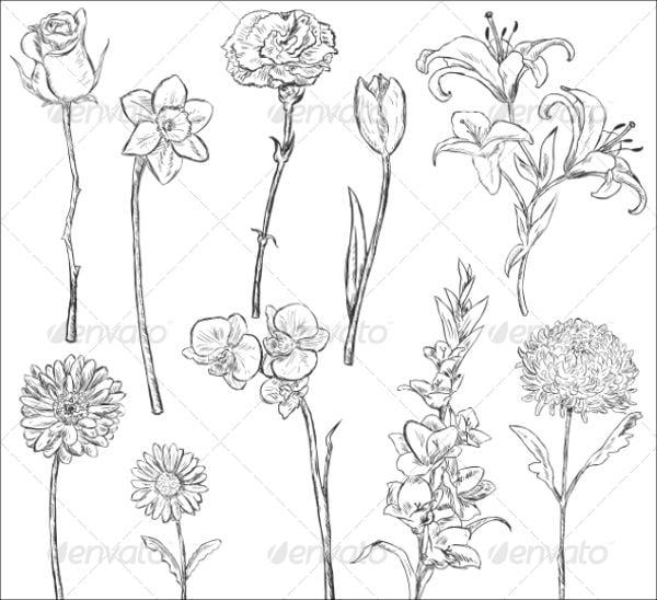 flower sketch vector1