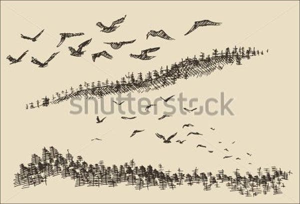 bird sketch vector