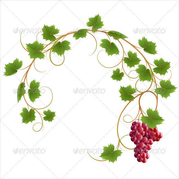 vine-leaf-vector