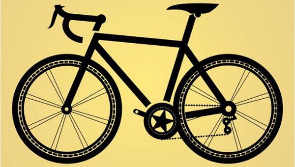 bicyclevectors