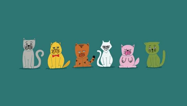 cat vectors