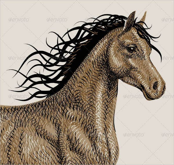 horse-drawing-vector