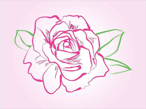 rose-drawing-vector