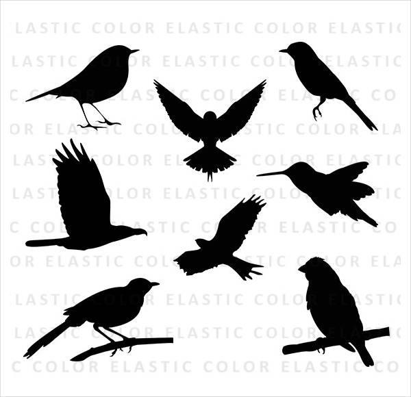 bird-silhouette-vector