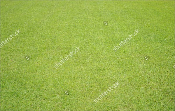 green-lawn-texture