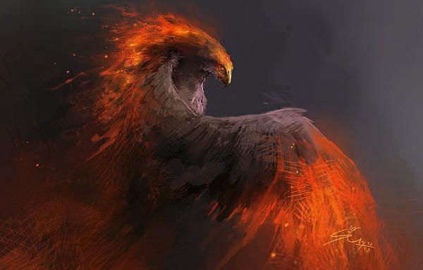 phoenix bird sketch