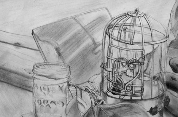 bird-cage-sketch