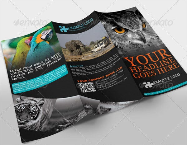 Adventure Travel Company Brochure