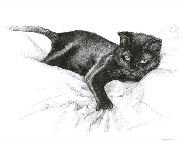 realistic-animal-sketch
