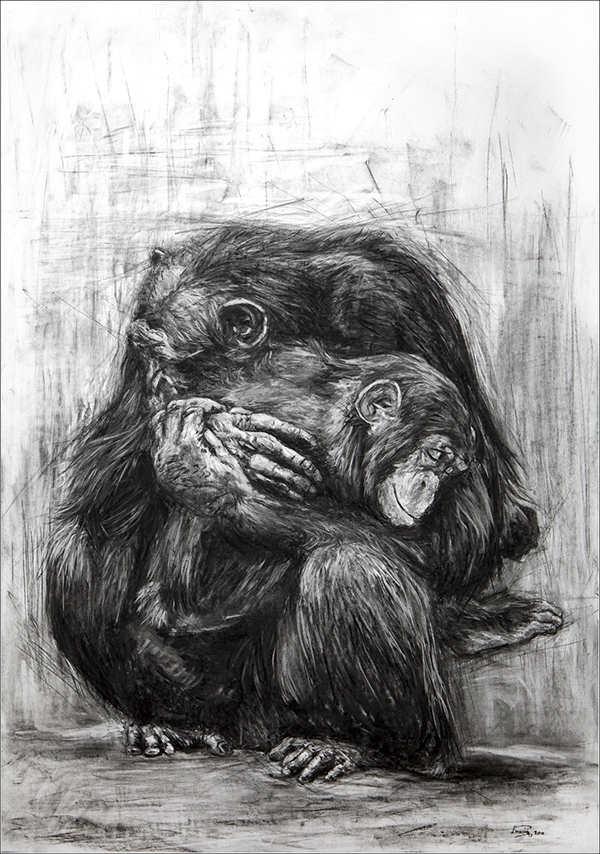 charcoal-animal-sketch