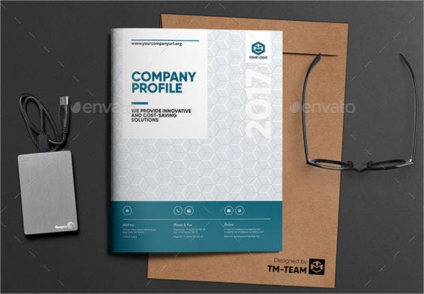software development company brochure