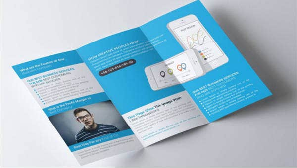 17  software company brochures