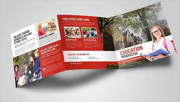educationtrifoldbrochures