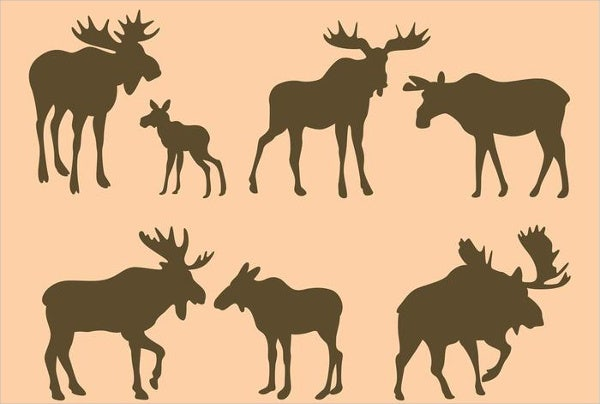 moose pyrography pattern