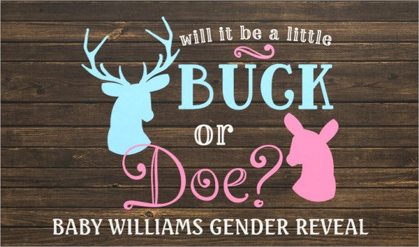 outdoor-gender-reveal-party-banner