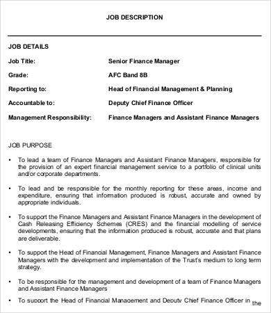 senior finance manager job description