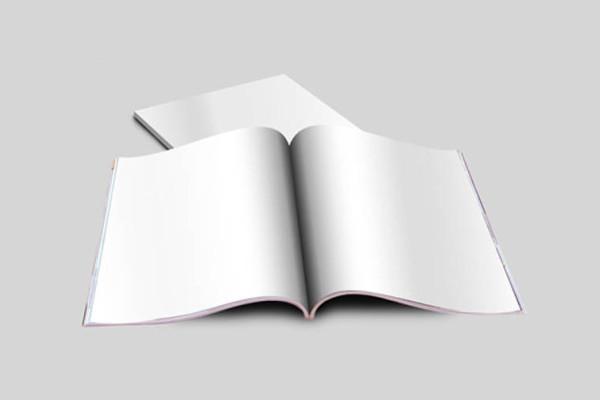 blank magazine template mockup