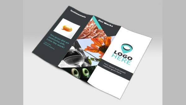 professional business brochures