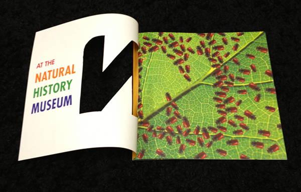 natural-history-museum-brochure