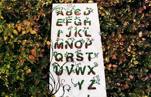 natural organic typography