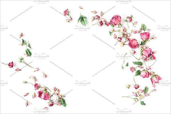 flower-border-background-template