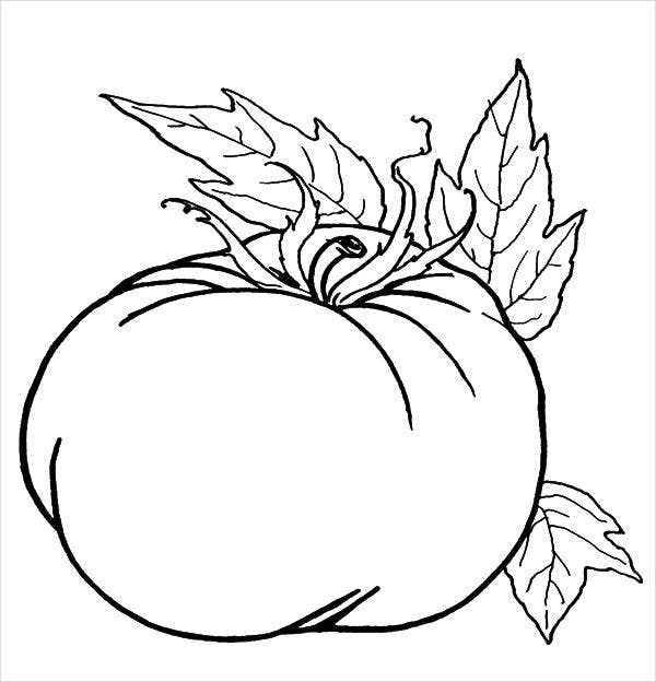 9 pumpkin coloring pages jpg ai illustrator download for Pumpkin coloring pages free printable