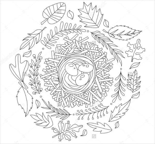 520 Top Bird Coloring Pages Mandala  Images