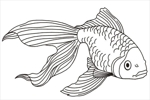 8 fish coloring pages jpg ai illustrator free premium templates - Dessin poisson simple ...