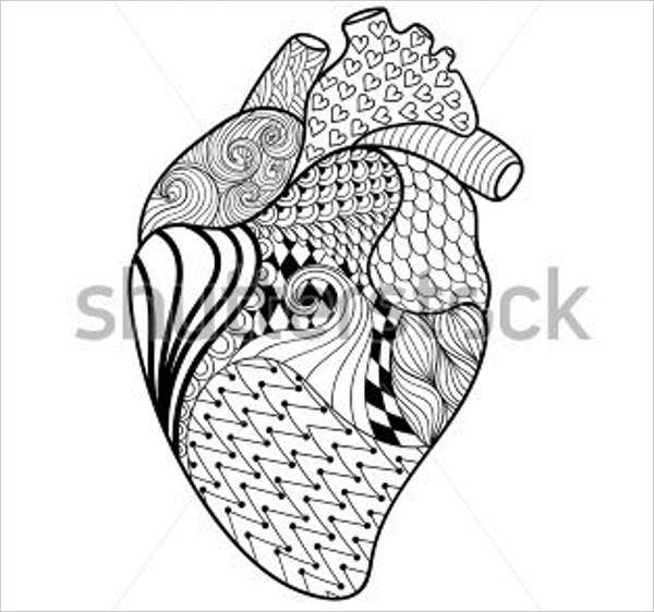 8 Heart Coloring Pages Jpg Ai Illustrator Download Free - coloring page of human heart