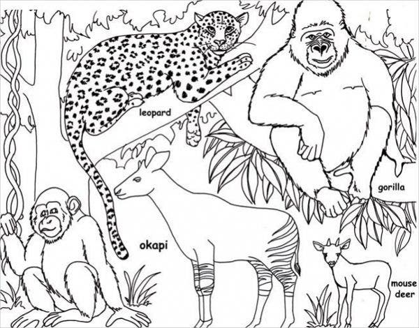 Free Printable Jungle Coloring Page