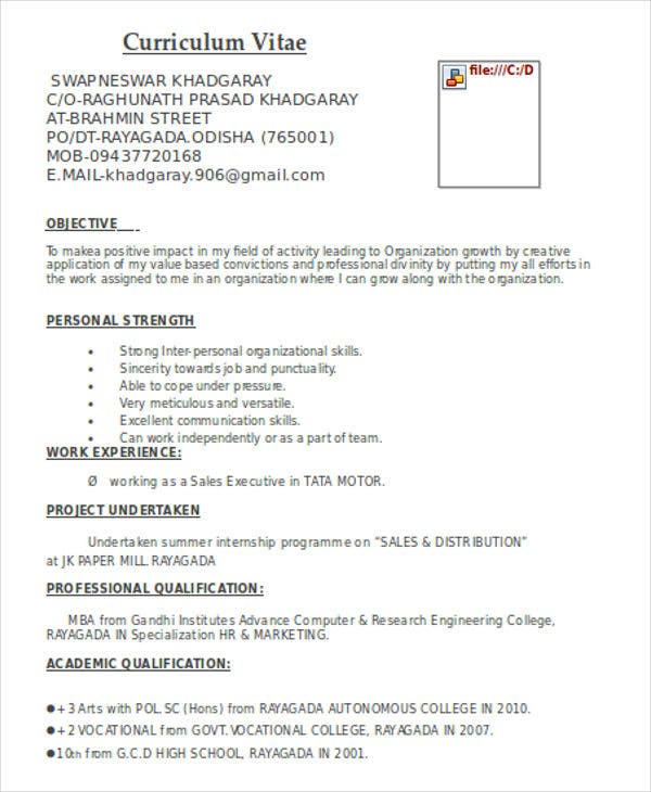 Professional Marketing Resume Format  Curriculum Vitae Format