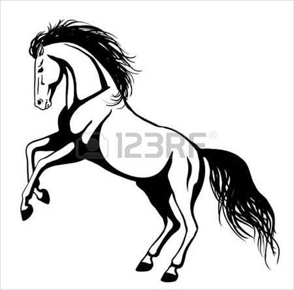rearing-horse-drawing