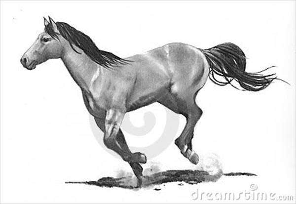 running-horse-drawing