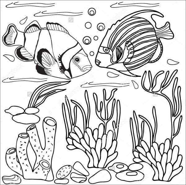 photo regarding Printable Sea Creatures called 5+ Sea Animal Templates - No cost Printable Crafts Colouring