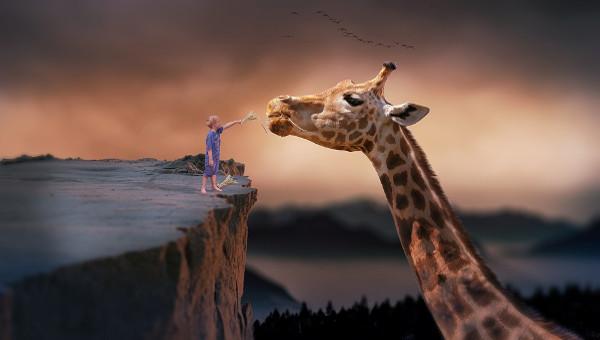 giraffeanimaltemplate