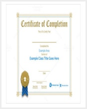 premium-class-certification-certificate-template-eps-10