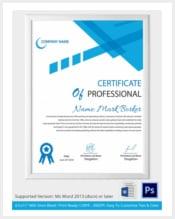 professional-certificate-template