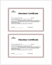 Certificate template 337 word pdf documents download free school volunteer certificate template yelopaper Choice Image