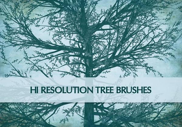 Nature Custom PS Brushes