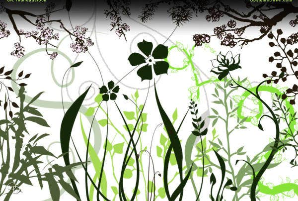 Nature Vector Brushes