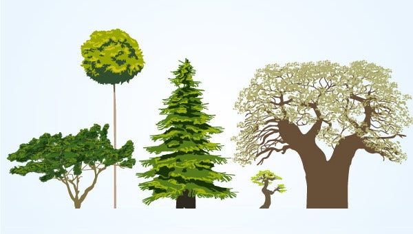 treeillustrations