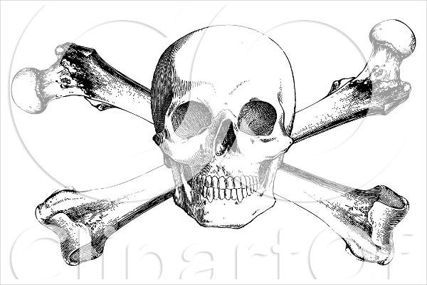 Black and White Skull Illustration