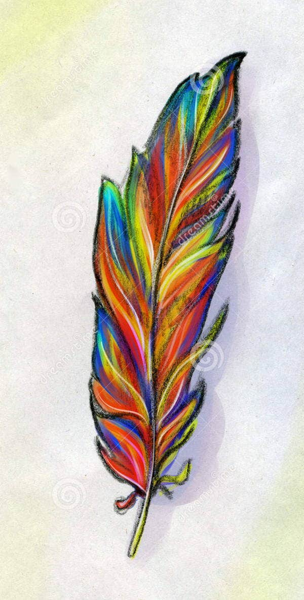 colorful-feather-illustration