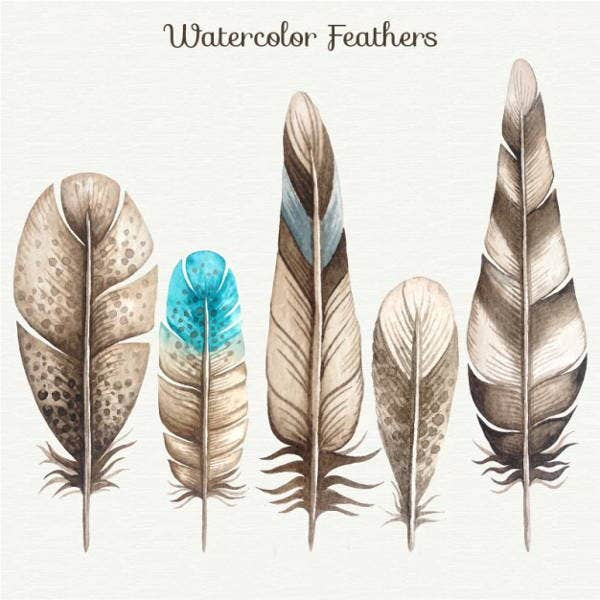 watercolor-feather-illustration