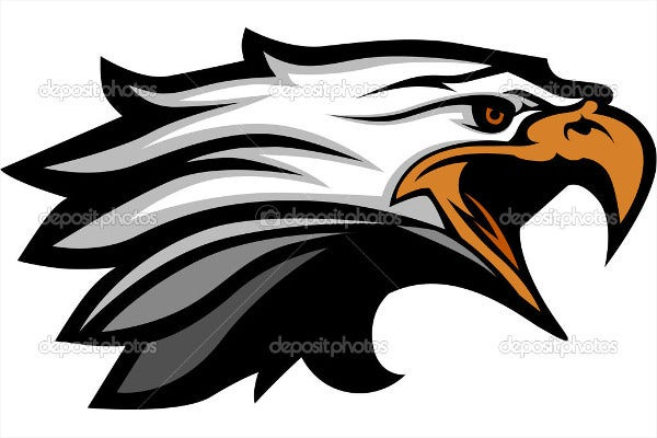 Eagle Head Illustration