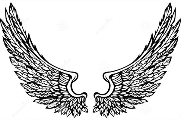 Eagle Wings Illustration